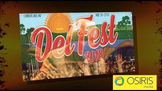 DelFest 2018 Interview Highlights